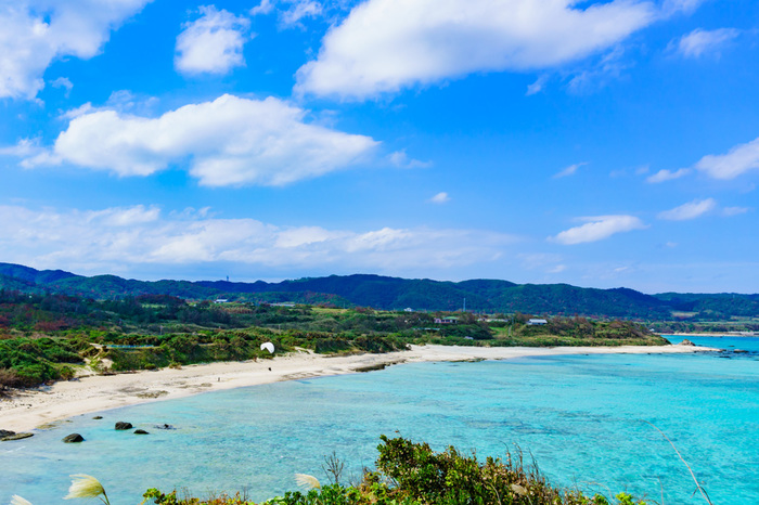 奄美大島でぜひ立ち寄りたいおすすめ観光スポットをご紹介してきました。行ってみたい場所は見つかりましたでしょうか。自然豊かな奄美大島だからこそ見られる景色や、や、郷土料理を堪能したりと、魅力溢れるスポットが他にもたくさんあります。目で、耳で、舌で、いろいろな体験で、奄美大島を存分に感じて、楽しんでみてくださいね。