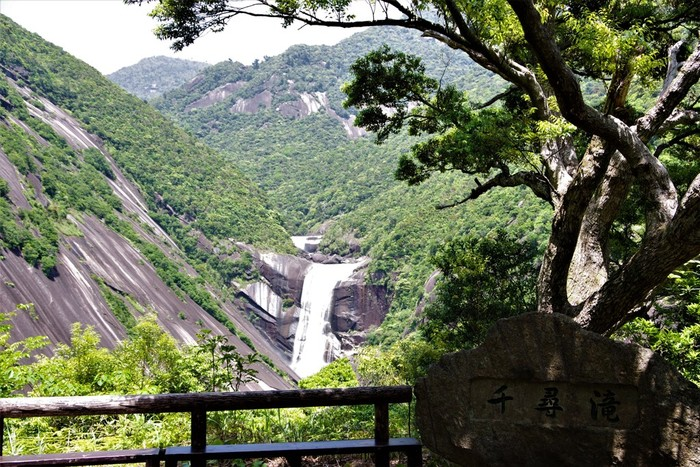 千尋の滝展望台から見ることができる「千尋の滝(せんぴろのたき)」は落差60mもある滝で、遠くから見るだけでもその迫力を感じられます。また、滝の横には巨大な花崗岩の一枚岩が!貴重な自然の風景を楽しんでくださいね。千尋の滝展望台までは、鹿児島や種子島への高速船の就航がある安房港から車で30分程度でアクセスできます。