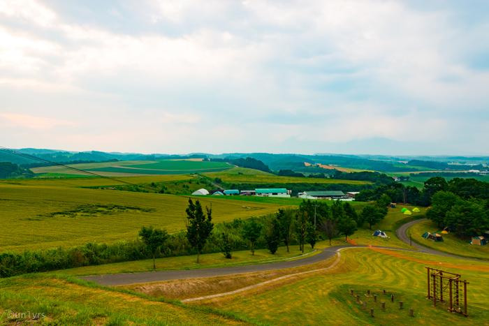 日の出公園からの眺めは、どこを切り取っても絵になります。なだらなか丘陵地帯と、緑豊かな牧草地が調和した風景は、まるでヨーロッパの田園風景のようです。