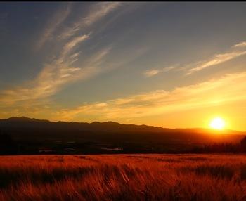 麓郷で眺める夕陽の美しさは傑出しています。沈みゆく太陽と、稔り豊かな大地が見事に調和した風景は絶景そのものです。
