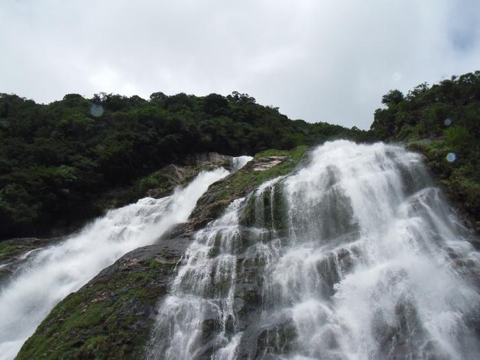 雨の量により滝の水の量も変わるため、毎日違った表情を見せてくれる滝でもあります。雨が多いことで知られる屋久島だからこそ、迫力のある姿を見ることができるのです。