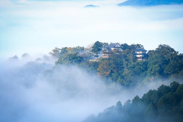 天空の城 © taka14 クリエイティブ・コモンズ・ライセンス(表示4.0 国際)https://creativecommons.org/licenses/by/4.0/  まるで空に浮かんでいるよう。そんなファンタジックな風景で魅了するのが、岡山県の「備中松山城」。現在、日本で唯一天守が残っている山城であり、「おしろやま」の愛称で親しまれています。  運がよければ、このように、雲海とのコラボレーションを楽しめます。現代的な街並みなどが見えないため、歴史ロマンあふれる、タイムスリップ気分を味わえそう。