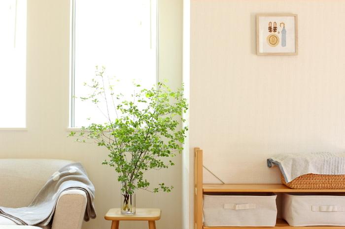 ソファーの横に小さいサイドテーブルを置いて、そこへクリアなフラワーベースに生けたグリーンを! ちょっと一息♪そんな時に目線のすぐ先にグリーンがあると、心が癒されそう…。