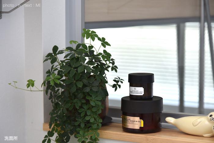 洗面所にも…。ツルが伸びて楽しめるタイプの植物は、窓辺や洗面所の鏡の脇など、高い場所に置くことで、空間を上手に演出してくれます。