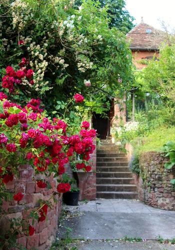 ヨーロッパ全体に言えることですが夏は絶好の観光シーズン。緑が美しくお花は咲き乱れ、赤レンガとの色のコントラストがとってもフォトジェニック!どこを撮っても絵になっちゃいます。