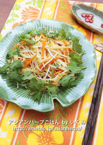 もやしとニンジン、たけのこをささっと炒めて、食感を大切にした炒め物です。たっぷりの野菜をいただくことができる上、酒の肴としてもおすすめのレシピです。
