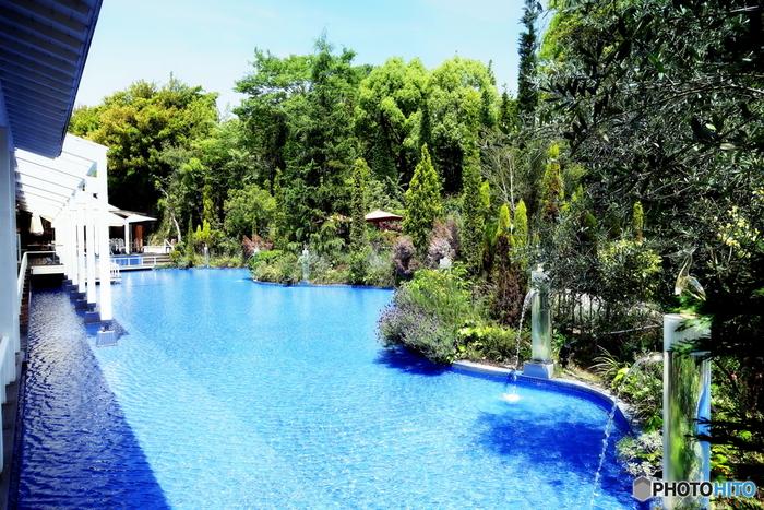 緑と花が透明な水にその姿を映し、ガラス細工の白鷺が見つめます。涼しげで美しい庭園は思わず見惚れるほど優雅です。