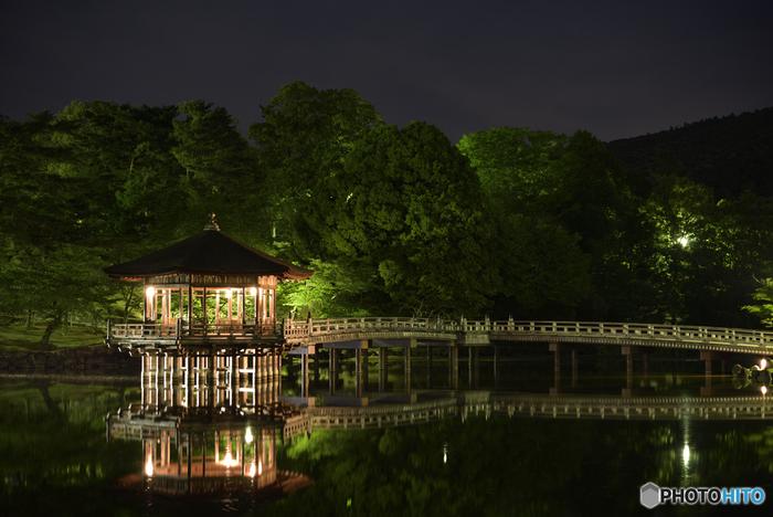 春日大社表参道より徒歩5分、奈良公園内の鷺池に浮かぶ浮見堂は、ライトアップされた神秘的な姿も人気があります。こちらは通年行われているライトアップ。静かな水面に映る鏡写しが綺麗ですね。夏のライトアップイベントの期間中には、お堂へと繋がる蓬莱橋に沿ってろうそくの明かりが灯され、美しい光の道ができあがります。