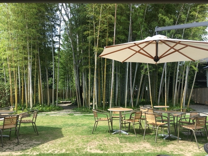 お天気の良い日は、竹林に囲まれたテラス席もおすすめ。お店は倉敷川沿いから、路地を入った先にあるので、静かで心地よい空間の中でくつろげます。