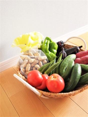 特にパパさんは仕事先などであっさりしたものだけではなく、「スタミナ」を付けるためにこってりしたものもよく食べています。そのため、家では野菜を中心としたビタミン類をきちんと摂ることをおすすめします。