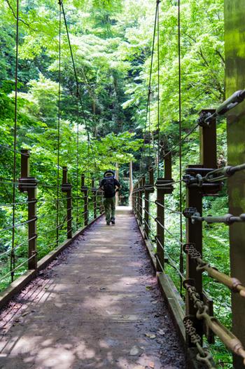 美しい緑に囲まれた、高尾山で唯一のつり橋です。歩くたびにゆらゆらと揺れてちょっとしたスリルを味わえます。