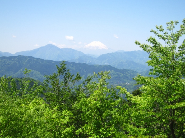 8月11日は山の日。「山に親しむ機会を得て、山の恩恵に感謝する」ための祝日です。とはいえ、山登りに縁のない人も多いですよね。TAKAO 599 MUSEUM(高尾599ミュージアム)は、そんな方におすすめの山の情報発信スポット。大人から子どもまで、家族みんなで楽しめます。