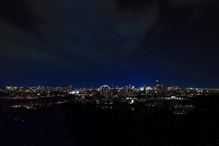 日中お散歩するのも良いですが、おすすめは青葉山からの夜景!日没から23時までは石垣や騎馬像がライトアップされ、デートスポットとしても人気。標高130mからの復興した仙台の夜景をぜひ心に刻んで。