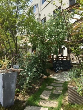 木の茂ったアプローチに心惹かれる人も多い「陽に吹かれ」。フード・ドリンクともメニューが豊富で、遅めのランチや深夜までお酒を楽しむこともできるお店です。