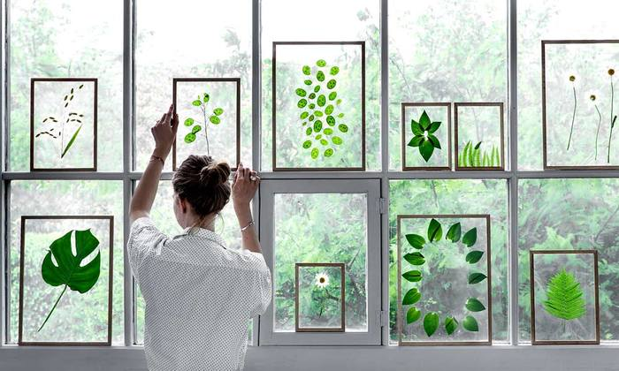数cmの余裕があれば、窓枠を美術館のようにディスプレイすることも。フレームは、コペンハーゲン発ブランドMOUBE(ムーベ)のFRAME。2枚のアクリル板の間に押し花・写真・絵など、お好きな物を挟んで飾ることができます。