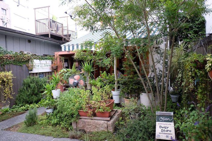 美観地区の奈良萬の小路と呼ばれる場所にある「アンティカ」。1階がカフェで2階が雑貨店となっています。お店の裏には緑がいっぱい。