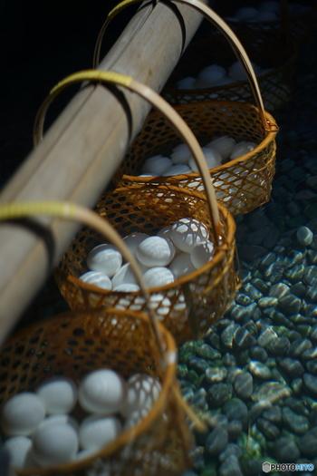 温泉卵とは黄身が半熟、白身は半凝固状態で仕上げたゆで卵のこと。黄身の凝固温度(約70度)が白身の凝固温度(約80度)よりも低いという性質を利用して、作られています。68度前後のお湯に30分ほど浸けておくと温泉卵の状態に仕上がります。湧出する温泉や蒸気がこの温度に近いと、温泉卵を作ることができるというわけです。
