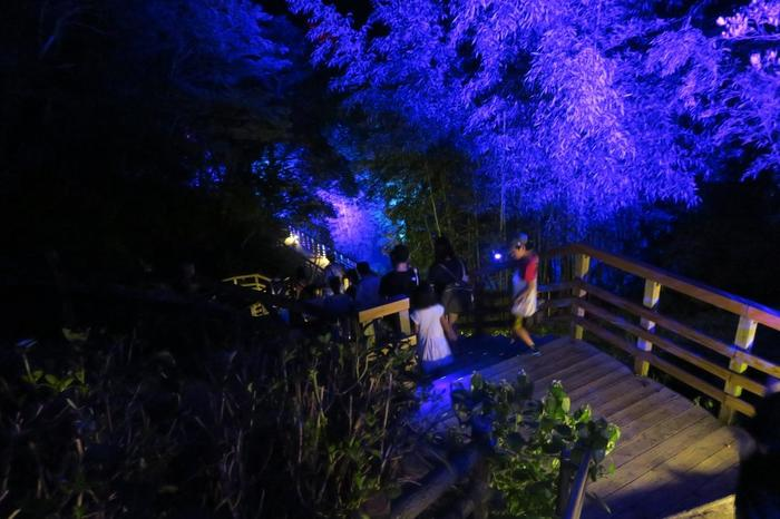 兵庫県立淡路島公園には、五感や身体を使い楽しむ体験型のアニメパーク「ニジゲンノモリ」、そしてグランピング施設「GRAND CHARIOT -北斗七星135°-」があります。宿泊者も楽しめる「ニジゲンノモリ」のナイトウォークや、豊かな自然と幻想的な夜景と星空、淡路島産の食材を堪能できる、注目の新しい施設です。