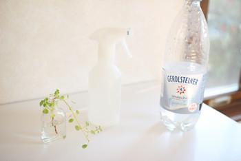 飲み残してしまった炭酸水は、炭酸が抜けると美味しくなくなってしまいます。そんなときは、窓ガラスや鏡のお掃除に使ってみましょう。