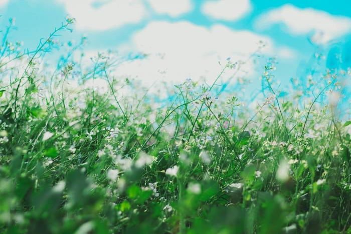 吸うときは新しいエネルギーを吸い込むイメージで呼吸しましょう。太陽や青空など自然の風景を頭の中でイメージしてみたり、明るい場面を思い浮かべると効果的です。