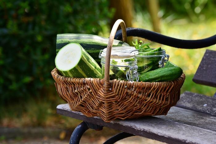 冬瓜・ズッキーニ・ゴーヤ。3種の夏野菜を使ったレシピをご紹介してきましたが、いかがでしたか? 定番野菜とは言い難い野菜ではありますが、それぞれ特徴的な味や食感が楽しめる夏野菜です。 ぜひレシピを参考にして、積極的に献立に取り入れてみてくださいね♪