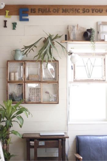 単調な壁に付けるだけで、お部屋の雰囲気を変えてくれるガラスの飾り棚。お気に入りの雑貨やグリーンを置いて、ナチュラルな空間を演出しています。