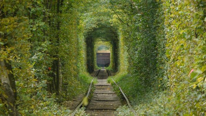 """""""愛し合うカップルが手をつないでトンネルをくぐると願いが叶う""""と言われています。緑に囲まれた美しいアーチの中を、大切な人とゆっくりと歩くのも素敵ですね。"""