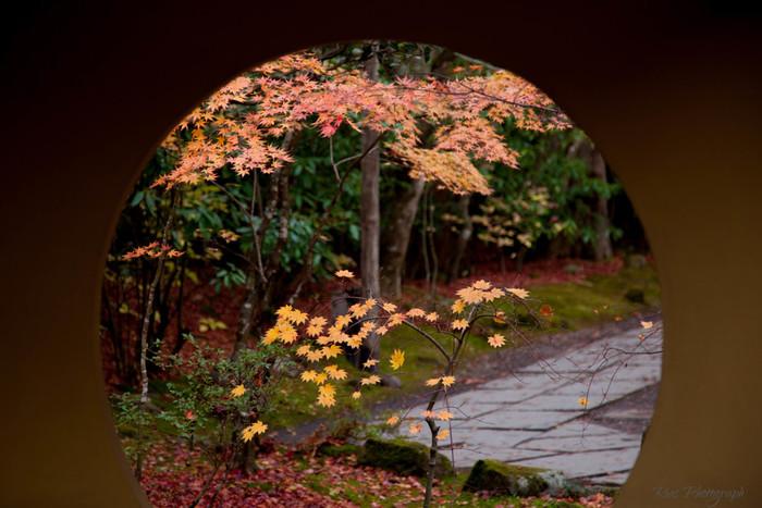 松島の定番スポットといえば「瑞巌寺」。ですが、その隣にある円通院もぜひ足を伸ばしてほしい場所。4つあるお庭を眺めていると、松島の豊かな自然と美しさに魅了されるはず。またオリジナルの数珠を作ることもできるので、ぜひ松島の思い出に体験してみてはいかがでしょう。