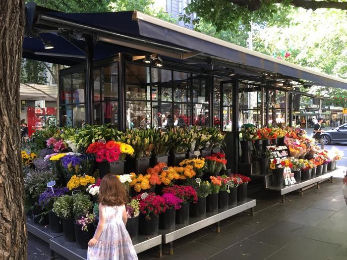 今週はどのお花にしようかな・・・?と選ぶ楽しさもちょっとハッピー。続けていくうちに知らなかったお花の名前も覚えられそうです。