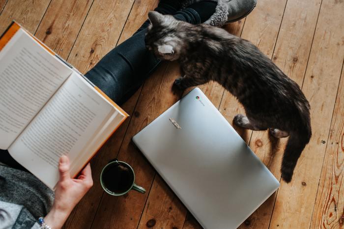 読みたかった本や写真集を開いてみるのもいいですね。かたわらにお気に入りの飲み物を用意すれば、ほら、私だけのほっこり空間の出来上がりです。