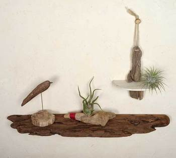 何気ない流木も、ウォールシェルフとして使えば、雑貨やグリーンが映える素敵な空間に。