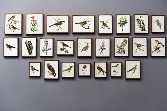 当たり前のようですが、まずはお気に入りのものを選ぶのがいちばんです。お部屋にずっと飾っておくものでもありますから、長く愛せる作品を選びましょう。