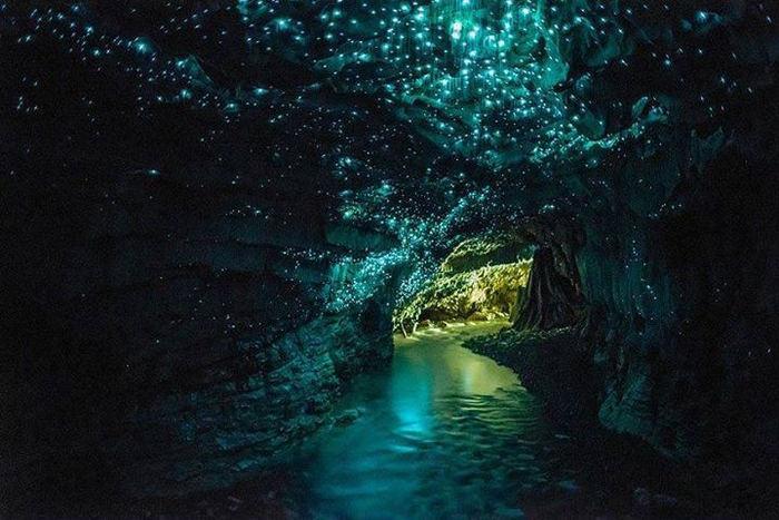 地中には、このような素晴らしい星空の世界が広がっています。ため息がでるほど美しいですね。  ただでさえ洞窟の中をボートに乗って行くだけでもワクワクしますが、このような神秘を目の当たりにすると、ふとリアルな現実を忘れてしまいそうです。