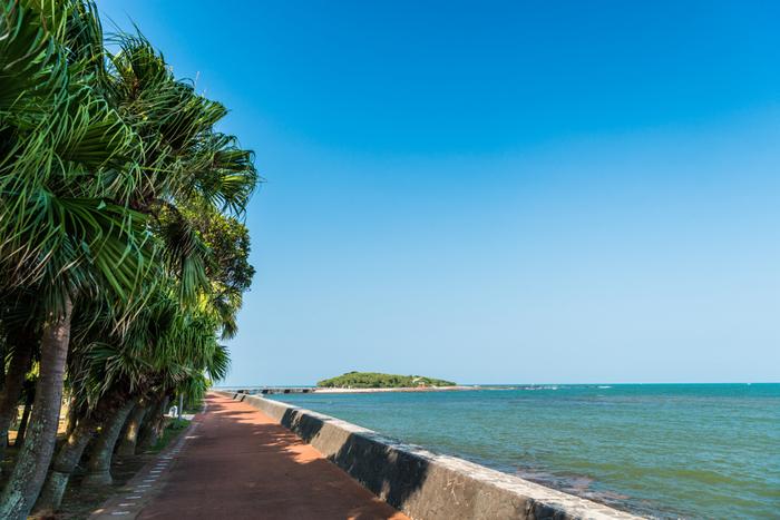 「過ごしやすい秋は好きだけど、もう少し夏気分を感じていたい…」 そんな方に、おすすめしたい【宮崎県 青島】は、青くて広い空、海に浮かぶ島、ヤシの木など…まるで南の島に来たみたいな感覚になれる場所です。