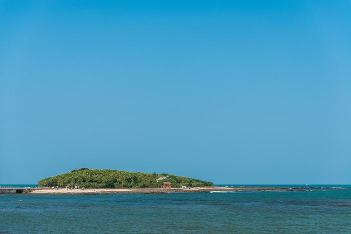 「青島」は、周囲約1.5kmの小さな島で、昭和27年に「青島亜熱帯性植物群落」として国の特別天然記念物に指定されました。青島海水浴場から青島へは「弥生橋」で渡ることができます。