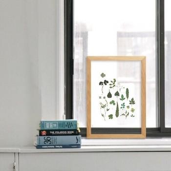 窓際にさりげなく飾ってみるのもいいですね。観葉植物なら手入れを随時しなければいけませんが、このように額縁に収めてしまえば手入れをしなくてもいいのが嬉しい所です。