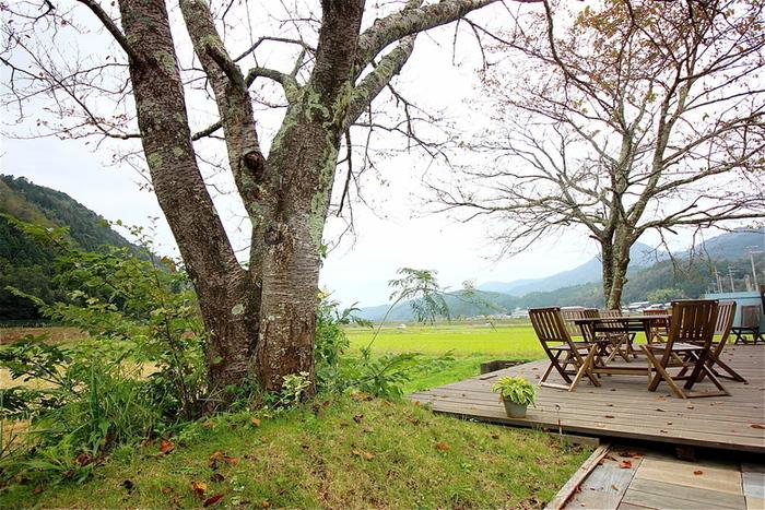 このカフェのおすすめポイントはこの景色!里山と広い空。時が止まったかのように、ゆったりとした時間を過ごすことが出来ます。