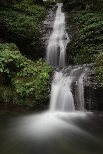 そしてその「早稲谷渓流」近くにあるのが、この「裏八反の滝」。京都自然200選に選ばれている場所です。今の季節は、セミの声と心地良い滝の音で夏を感じられる涼スポットになっています♪