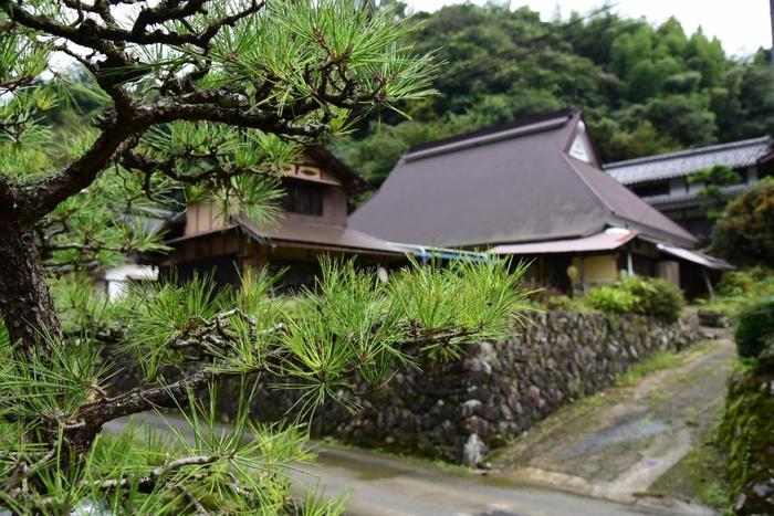 """もう1つおすすめしたいグリーンスポットがあります。そこがこの""""黒谷""""。こちらは、京都府の無形文化財に指定されている「黒谷和紙」の里として有名なところなんですよ。"""