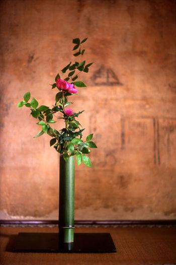 草花を活けて美しい形を表現する「華道」は、古くから日本人に愛されてきた伝統芸術のひとつです。花を美しく活けるための作法を通して、女性らしい所作を身につけることができます。草花の構成や配色、バランスの取り方など。より美しい形を表現するための技能とともに、四季折々の植物についても勉強できますよ。