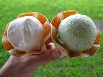 「ぶらっとハウス」は大島牛乳の牧場と工場が併設されているため、アイスクリームを食べることもできます。その日ごとにさまざまな種類の味が販売されており、どれもここならではの珍しい味なので、ぜひ堪能してみてくださいね。