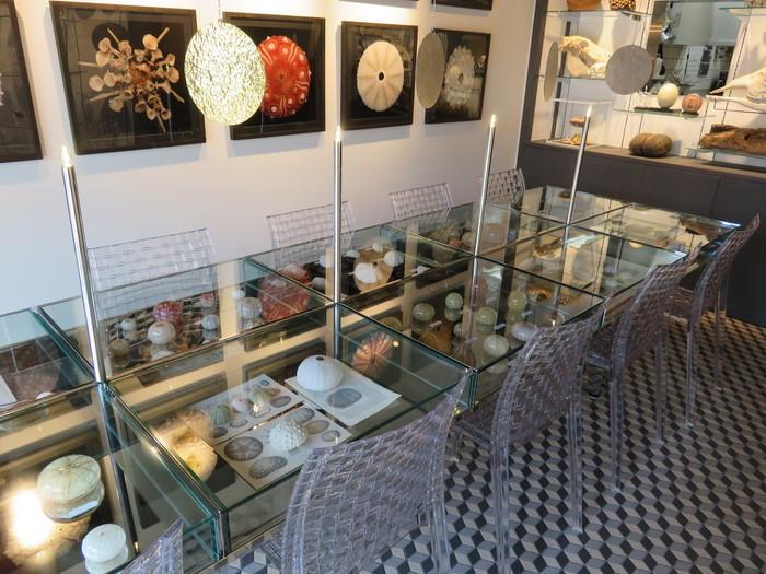 """動物や植物、鉱物など自然界の造形物を展示・販売している「ウサギノネドコ」に併設されたカフェ。""""自然の造形美を伝える""""をコンセプトにした店内はまるで博物館のよう!フォトジェニックなインテリアはSNSで大人気です。"""