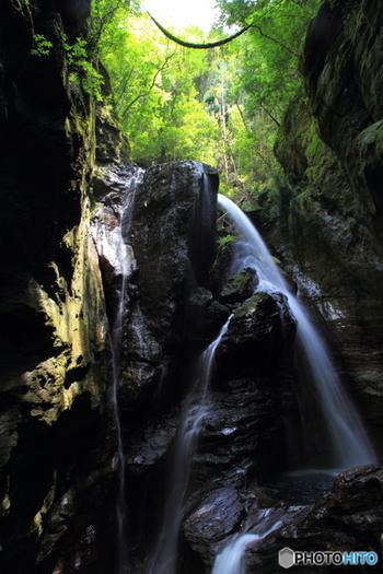 遊歩道の先にある【雨竜の滝】は、迫力のある水の流れが見所の落差20m滝です。流れ落ちている水も、肉眼で見ると綺麗な「仁淀ブルー」なのだそう。