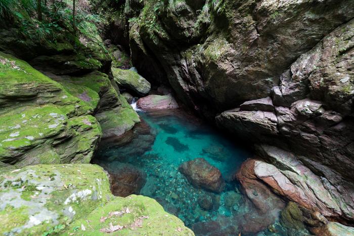 大自然をまるごと体験!奇跡の清流「仁淀ブルー NIYODO BLUE」で外遊びを楽しもう