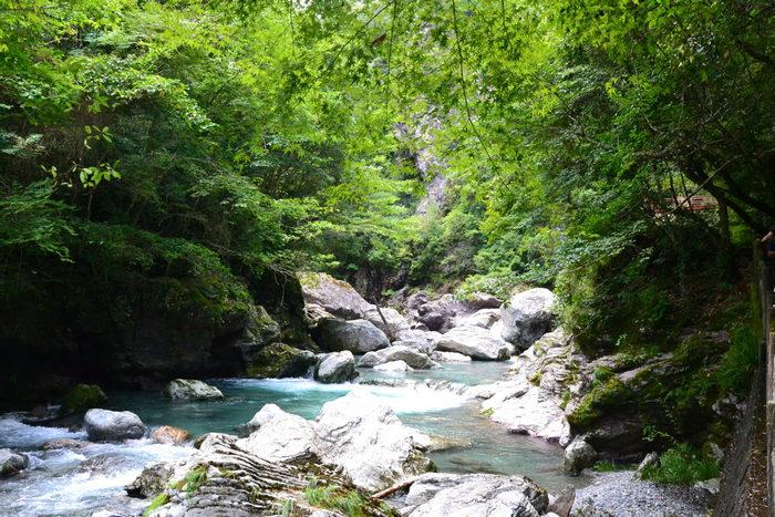 美しい自然と、たくさんのアクティビティを満喫できる「仁淀川」についてご紹介しました。高知に行く際には、ぜひ訪れてみてくださいね。