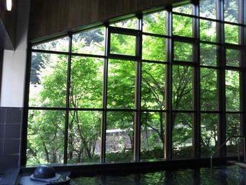 こちらの温泉は日帰りでも利用でき、露天風呂からは中津渓谷を望めます。併設のレストラン「PONTE」では、ランチやディナーも楽しめますよ。