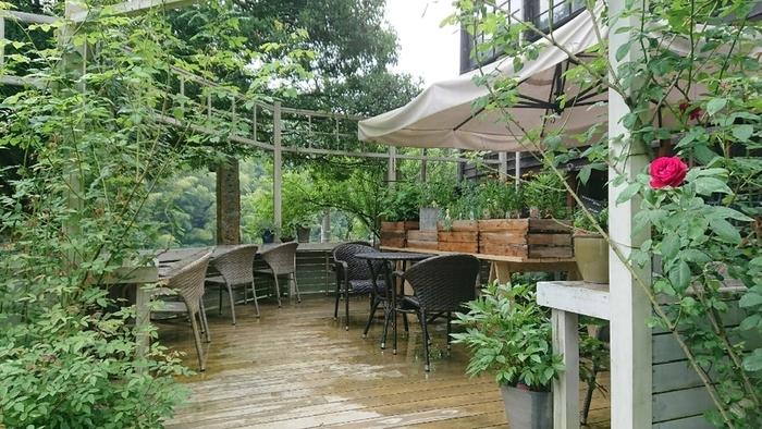 こちらはテラスエリア。  庭や里山の緑を存分に楽しめるエリアですよ。