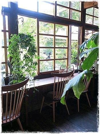 カフェの中からも、豊かな緑が堪能できますよ。
