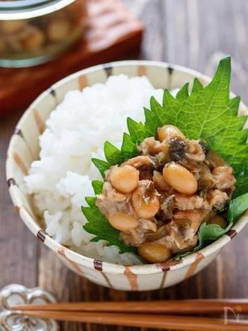 ツナとこんぶ豆で作るご飯のお供。大豆が入っているので噛みごたえもあって、こんぶとツナの旨みでご飯がすすみます。