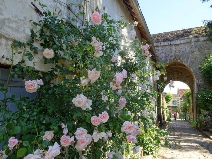 フランス北部にあるピカルディ地方にある「ジェルブロワ」という村は、人口なんと100人以下にも関わらず、バラの村として名の知れた有名な村です。バラの村として有名になったのは、フランス人画家であるアンリ・ル・シダネルが、戦争で荒れ果てた村を再建する策として持ち出したのが始まりだそう。今では、色とりどりの花で囲まれる美しい村になりました。